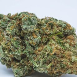 Electric Lemon G Sativa