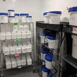 Bulk CBD Isolate Wholesale (Kilograms)