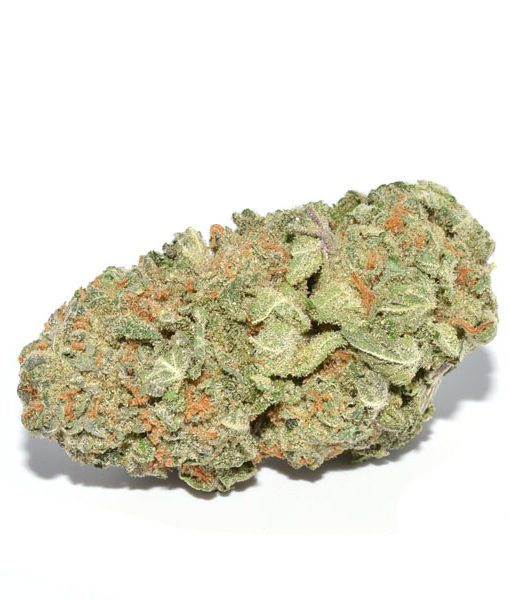 girls scout cookies hybrid