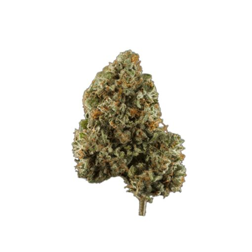 original green bud hybrid