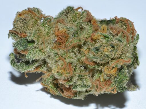 super silver haze sativa